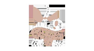 logo_coffeelicious